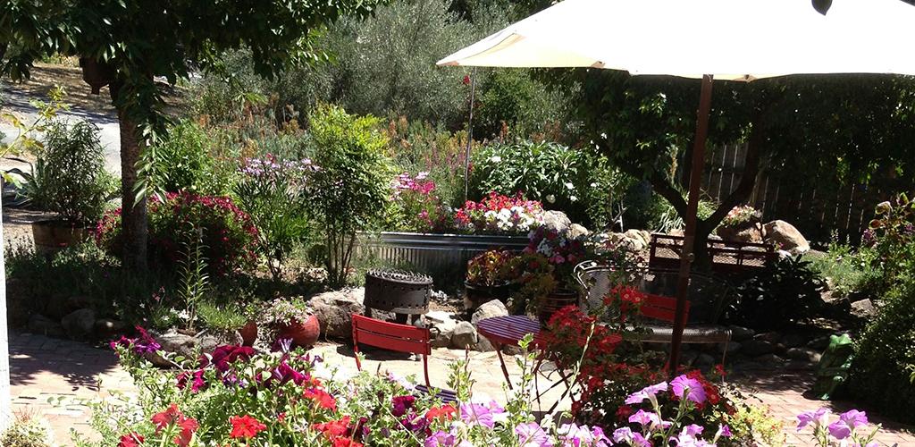 scraps garden sonoma